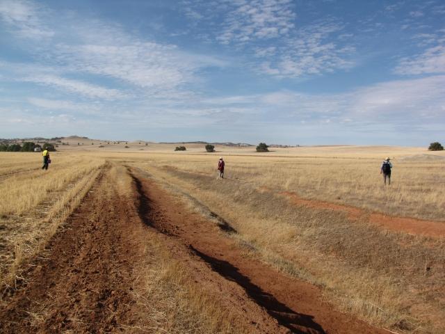 GPS transect survey at Baker's Flat