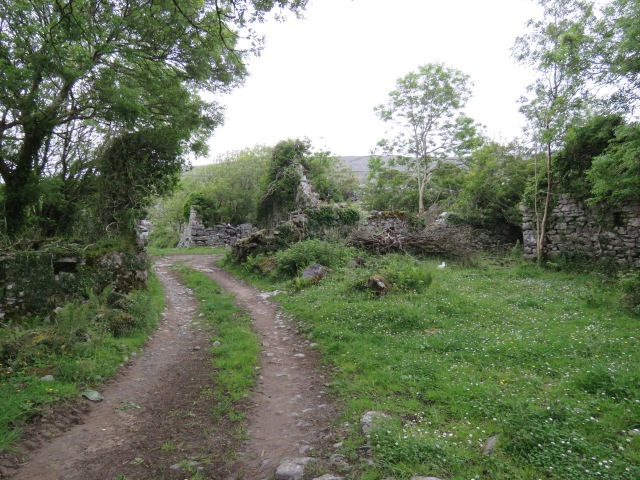 The remains of a clachan, Co. Clare